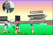Play Ashes 2 Ashes Zombie Cricket game