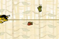 Play Squirrel Harvest game
