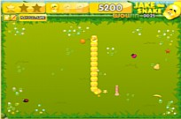 Play JaketheSnake game