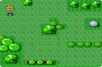Play Lawn Pac game