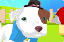 Play Baby Pitbull Dress Up game