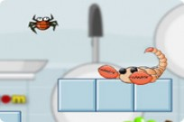 Play Pet Spider Care game