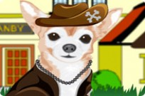 Play Little Chihuahua Dressup game