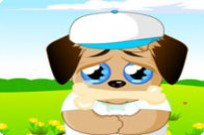 Play Sad Puppy game