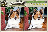 Play Gimme 5 Dogs game
