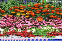 Play Hidden Hearts Flower Garden game