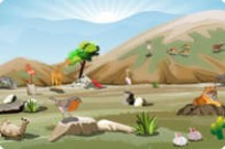 Play Animal World game