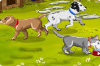 Play Hanna's Sweet Puppies game