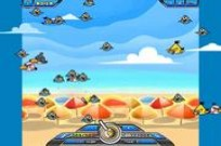 Play Bird Catcher game