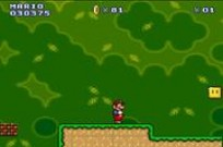 Play Mario new game