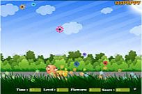 Play Flower Catcher game