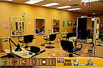 Play Salon game