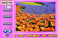 Play Beauty Flowers Find the Alphabets game