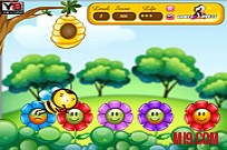 Play Bee Amass game