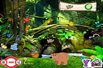 Play My Jungle game