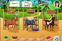 Play Horse Care Apprenticeships game