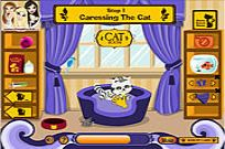 Play Cat Breeder game