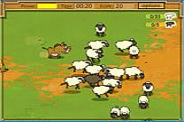 Kaban Sheep Game