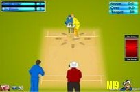 Play IPL Cricket Ultimat game