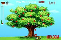 Play Catch The Sweet Apples game